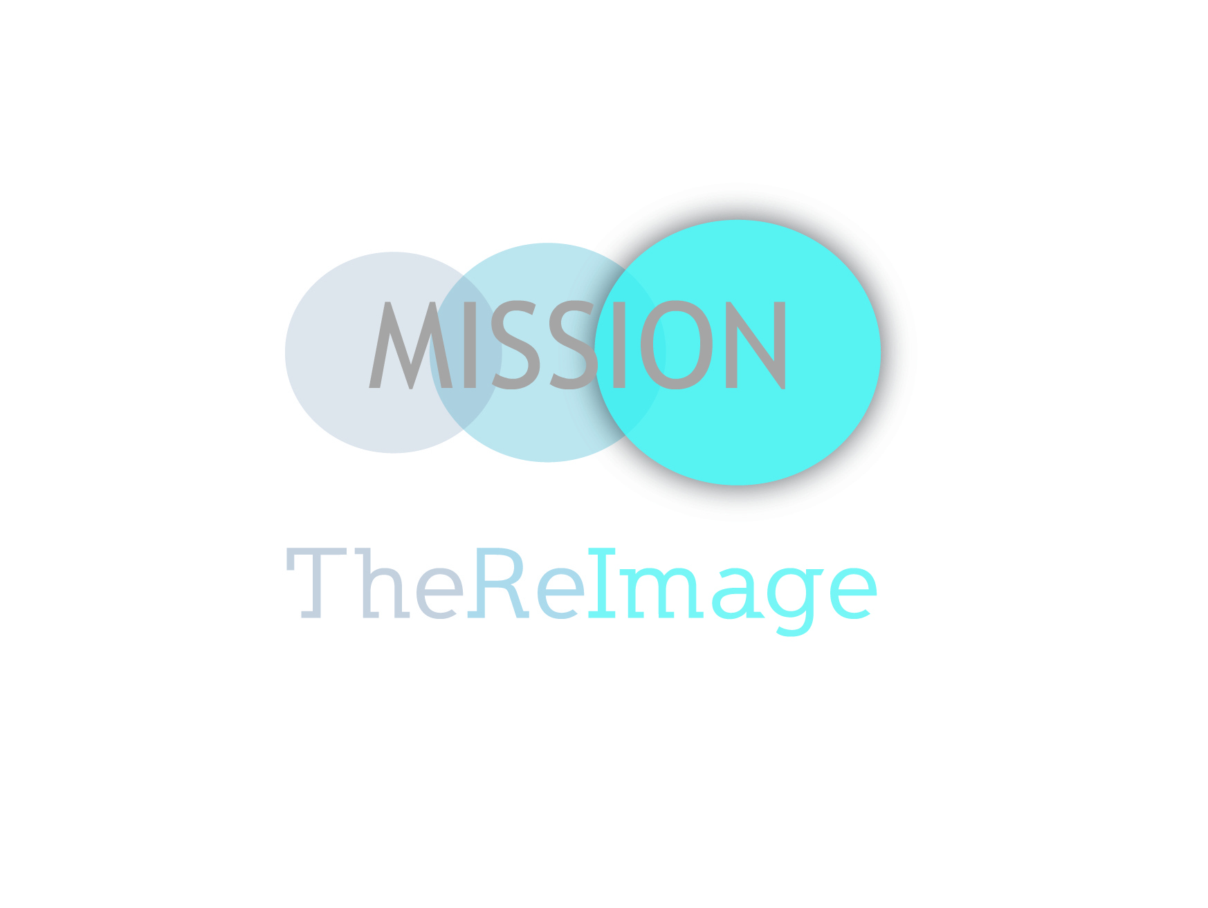 The ReImage Mission